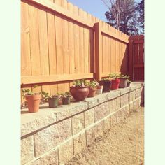 My garden pots