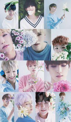 Seventeen Lee Seokmin, Seventeen Jun, Seventeen Lyrics, T Wallpaper, Seventeen Wallpapers, Seungkwan, Korean Celebrities, Cute Wallpapers, Boy Groups