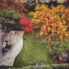 #photo #instagood #autumn #sanremo #nature #trees #leafs #wonderfulplace #garden #villa #pieceofparadise #ilovemyjob #work #realestate #sales