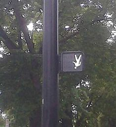 Crosswalk ~ 27 You Had One Job Fails