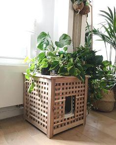 "783 Likes, 18 Comments - @naomipluym on Instagram: ""This #ikeahack is the best. #ikea #catlitter #urbanjungleinantwerp #ikeaHOL #plants #plantstagram…"""