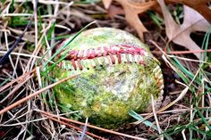 Nothing better than a worn out ball...sign of a lot of fun!