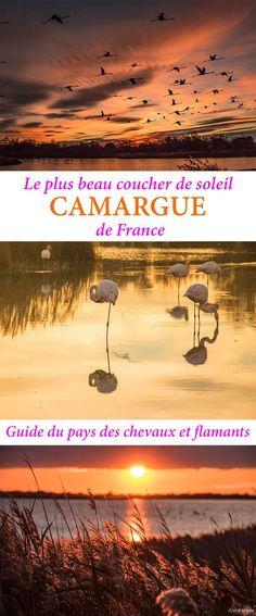 Les plus beaux couchers de soleil de #France sont en #Camargue. Guide du pays magique : où voir les flamants roses, plages sauvages....