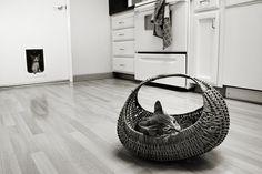 the cat door @exlibris