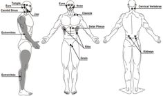 The human body has multiple weak spots that you can target to your advantage.