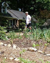 How to install a front yard vegetable garden w/out alienating the neighbors - Van Malone at work in his garden