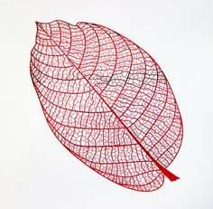 Printed with the Screen Sensation + Foliage screen