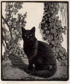 Lionel Lindsay- Black Cat - Wood engraving, 1922.