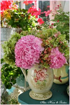 Love pink hydrangeas in a lovely vase at Aiken House and Gardens at Prince Edward Island, Canada