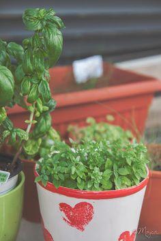 KMETIJA Planter Pots