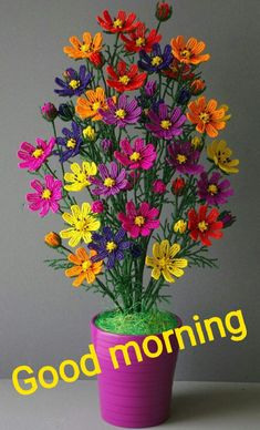 so beautiful flowers .have a fanstaic day. Good Morning Wishes Gif, Good Morning Clips, Good Morning Sunday Images, Good Morning Love Messages, Good Morning Images Flowers, Good Morning Picture, Morning Pictures, Morning Messages, Good Morning Scripture