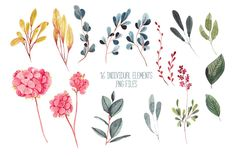 Botanica - watercolor set by Charushella on @creativemarket