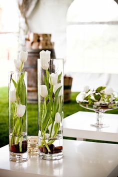 art floral moderne, tulipes blanches