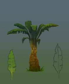 Palm by Denis-off