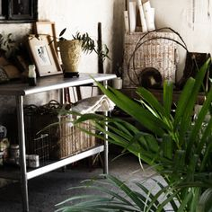 Patricia Larsen's Mexico Studio / home, such an inspiration!