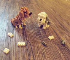 Ta-da! Aren't they so adorable?!?😍 I'm going to buy some more of these nanoblock. This is so much fun✨ 열심히 만든 결과. 아 뿌듯해라  #nanoblock #lego #fun #hobby #puppy #dog #woof #sheepdog #goldenretriever #retriever #asian #cute #toy #weekend #relaxing #나노블럭 #집 #취미 #강아지 #주말 #레고  #