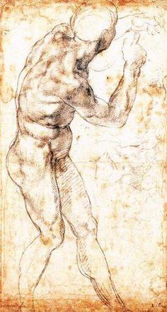 MICHELANGELO BUONARROTI ( 1475 - 1564 ) - Studio di nudo virile (italian renaissance)