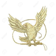 Eagle Clutching Bullwhip Drawing Vector Stock Illustration Drawing sketch style illustration of an Eagle Clutching single-tailed Bullwhip whip viewed from front on isolated background. Drawing Sketches, Drawings, Eagles, Tarot, Rooster, Retro Illustrations, Vector Stock, Wallpaper, Animals