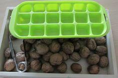 Vie pratique : transférer des noix à la pince à escargots (Nathaliell)