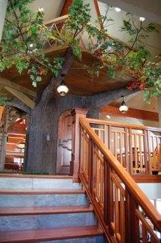 "Some treehouses are built with more than just fun and games in mind. ""This one belongs to a great family with a special-needs daughter,"" says architect Warren Lloyd. ""It occupies the loft level of the house, and the trunk conceals a residential lift that ensures the daughter has access to all parts of the house."" <3"