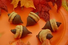 """Chocolate Acorns - melt a small amount of chocolate chips in the microwave. Using that as """"glue,"""" stick a Hershey kiss to one side of a mini Nutter Butter. Stick a whole chocolate chip to the other side."""