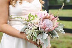 King Protea Bouquet dusty miller