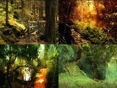 mysterious forest bridges.