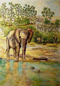 Elefante(Contest by anibas)