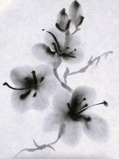 Serie Flores Tinta china sobre papel arroz By Reyes Muñoz 2015 #ink #sumi e #zen www.laideadereyes.blogspot.com