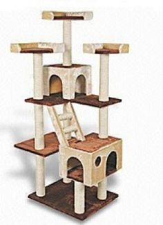 1000 images about epic cat trees on pinterest cat trees for Epic cat tree