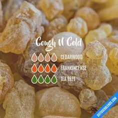 Cough N Cold - Essential Oil Diffuser Blend