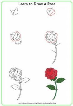 Apprendre à dessiner une rose