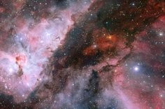 The stars Wolf-Rayet and Eta Carinae located in the heart of the Carina Nebula.