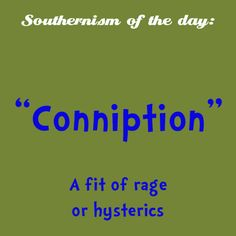 """Proper use: """"she just about had a conniption over it!"""""""