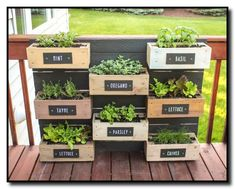 Last year's growing season was surprisingly a success. I decided this year to make my wall planter into an herb garden. I made painted plywood labels and screwed them into each box. O… herb garden diy wall vertical planter Herb Garden Planter, Diy Herb Garden, Herb Garden Design, Herb Planters, Garden Boxes, Balcony Garden, Herb Gardening, Organic Gardening, Palette Herb Garden