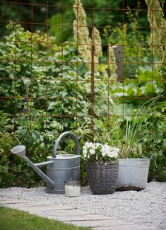Need to find a use for these rusty iron nets in my garden!