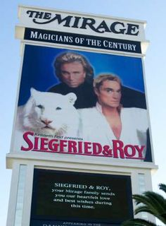 Image detail for -Siegfried and Roy star attacked by 600 pound Tiger