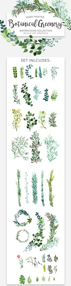 Greenery Wreaths and Borders by Wooly Pronto on @creativemarket, eucalyptus wreaths, watercolor clipart, wedding invitation art pack, watercolor collection, botany, leaves, branches, invite design, graphics.