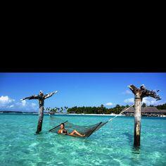 hammock in crystal blue water... yes please!