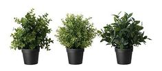 10 Daring Tips: Artificial Plants Wall Products artificial plants outdoor water.Large Artificial Plants Leaves artificial garden back yard.Artificial Plants Ikea Home. Small Artificial Plants, Artificial Plant Wall, Artificial Flowers, Garden Plants, Indoor Plants, Ikea Plants, Decoration Plante, Pot Plante, Office Plants