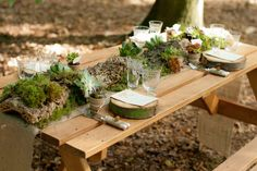 rustic wedding succulents table | Rustic table setting