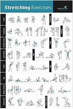 Stretching Exercise Poster 20 x 30 is part of Workout posters - Comprehensive laminated poster depicting 53 excellent stretches used by athletes and great for everyone Most to be performed dynamically at a controlled pace for holds Fitness Workouts, Gym Workout Tips, Yoga Fitness, At Home Workouts, Fitness Motivation, Workout Routines, Stretches Before Workout, Mens Fitness, Arm Stretches