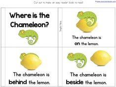 A Color of His Own Kindergarten Literature Unit Printables - 1+1+1=1