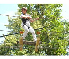 The UK's most exciting treetop adventure, high ropes and team building courses right here in Guildford, Surrey with all kinds of obstacles, Zip Wires and a freefall descender. Team Building, Surrey, Adventure, Gallery, Wood, Roof Rack, Woodwind Instrument, Timber Wood, Saree