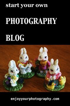 How To Start A Photography Website (Today) - Enjoy Your Photography Photography Articles, Photoshop Photography, Photography Projects, Photography Website, Creative Photography, Amazing Photography, Nature Photography, Photographer Needed, Promote Your Business