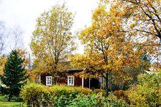 ***Mökki syksyllä // Cottage in the fall (Finland) by Smerikal c.