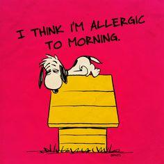 I think I'm Allergic to morning.