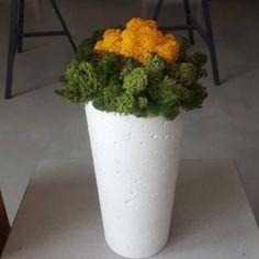Planter Pots, Herbs, Herb, Plant Pots, Spice