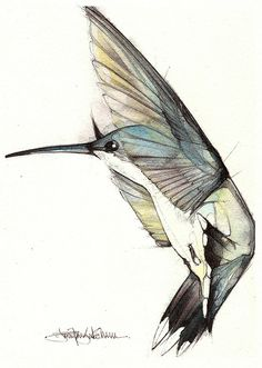 by Jennifer Kraska, via Flickr (watercolor and pen)