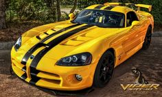 Yellow Dodge Viper SRT 10 by *pingallery on deviantART